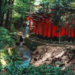 Wanderlust Wednesday: Fushimi Inari